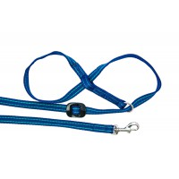 All-in-one Clip to Collar (Navy/Jade)