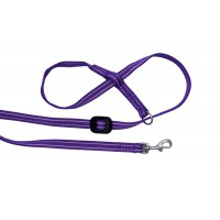 All-in-one Clip to Collar (Purple/Pink)