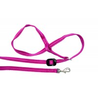 All-in-one Clip to Collar (Pink/Wine)